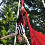Rachel Finan, Daredevil Circus