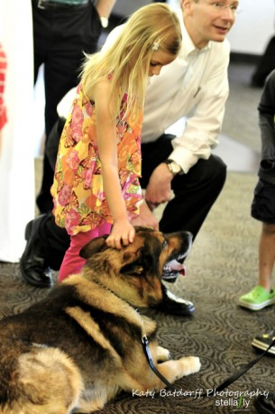 Humane Society of West Michigan presents K-9 Cabaret